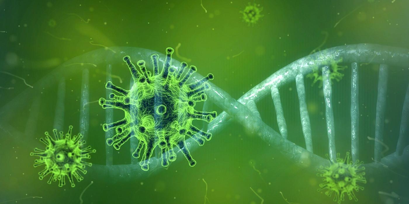 Viren – Freunde oder Feinde des Menschen? | Open Science