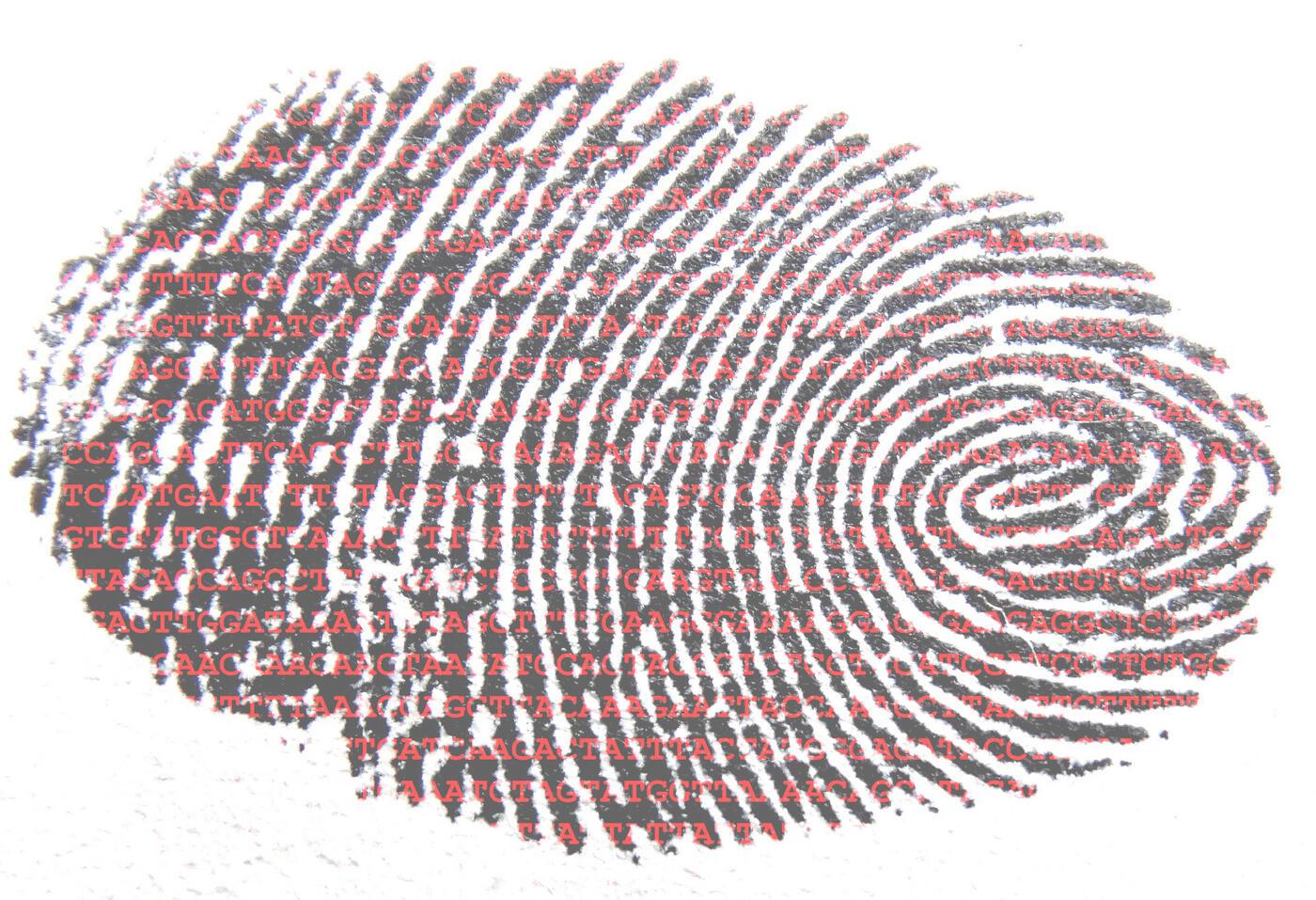Fingerabdruck mit DNA-Sequenz