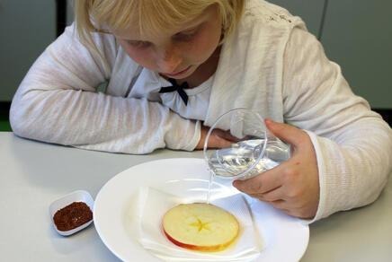 Kind, das eine Apfelscheibe in einem Suppenteller mit Wasser begießt. Daneben liegen Kressesamen.