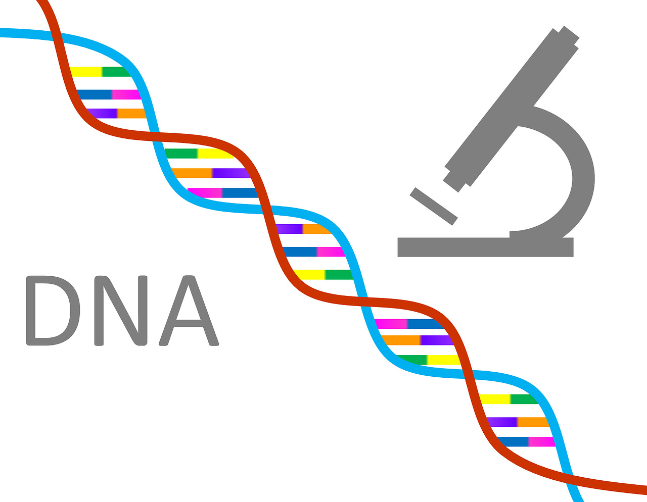 Was ist DNA? | Open Science